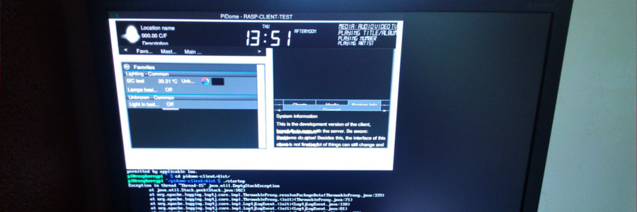 Raspberry Pi monitor - display resolution